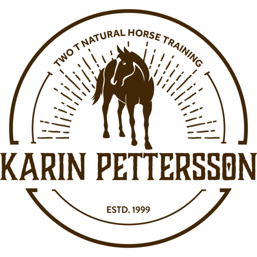 Karin Pettersson